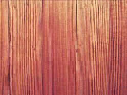 縁甲板・腰張板・床板1